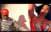 Troy Ave – Why (Official Video) @Troyave